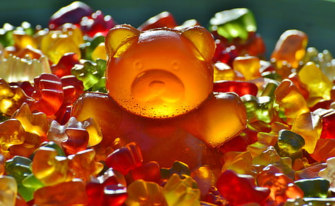 assorted-color gummy bears