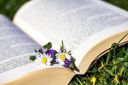 two petaled flowers in middle of opened book