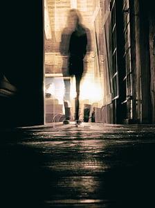 silhouette of woman on black wooden floor