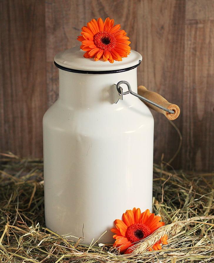 white ceramic jar with orange flower on top