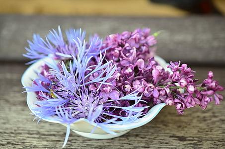 purple petaled flowers on bowl