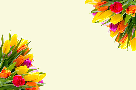 photo of pink, orange, and green flowers