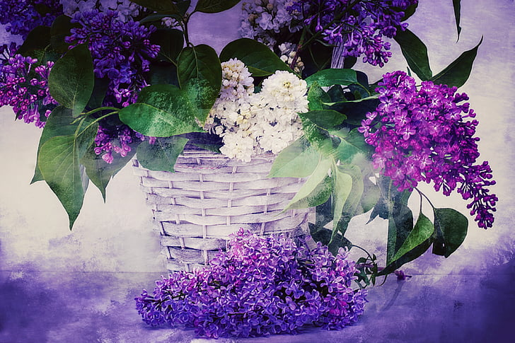 purple and white petaled flowers in white basket