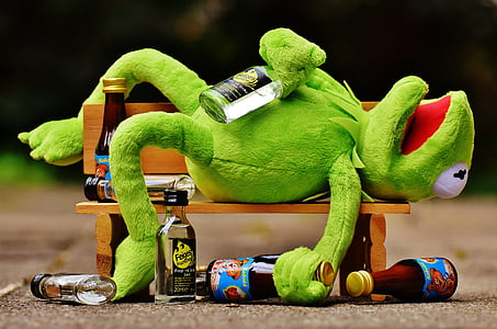 Kermit the Frog with glass bottles lying on wooden bench