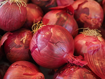 red onion on onions lot