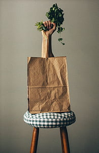 right human hand holding green leaf vegetable in brown paper bag on white-and-black checked padded stool