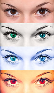 eye sketches collage