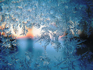 close up photo of snowflakes