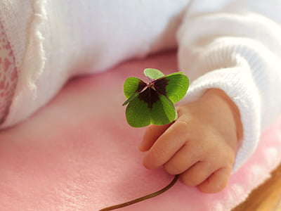 toddler holding green leaves