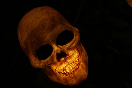 brown skull lighted table decor