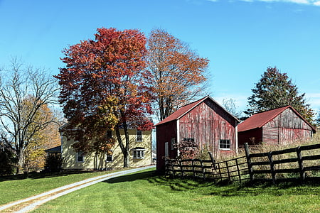red barn photography