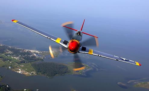 gray propeller plane during daytime