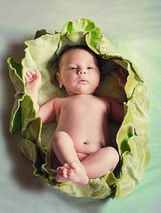 baby on green nest
