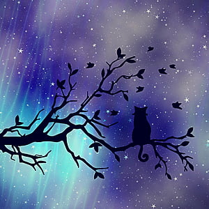 silhouette of cat on tree