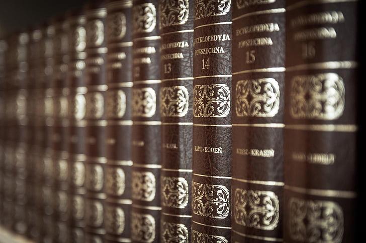 brown hardbound book lot
