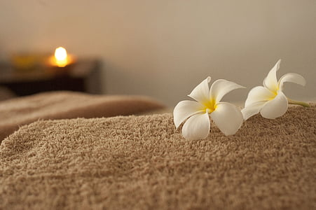 two white petaled flowers on brown towel