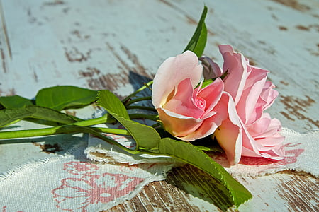 pink roses on brown wooden surface