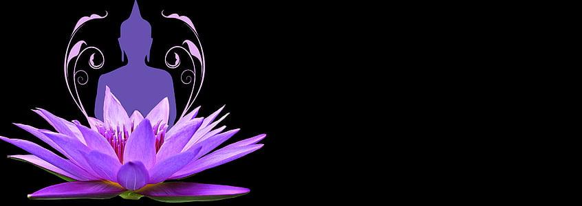 purple lotus flower with Gautama Buddha