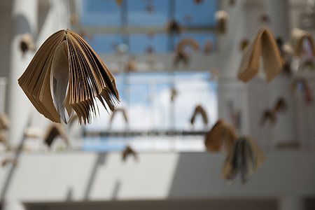 selective focus photography of hanging books