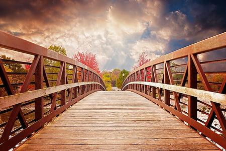 brown wooden bridge at daytime