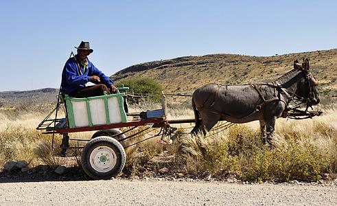 man riding rickshaw pulled by donkey