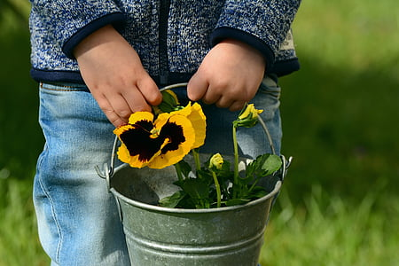 person holding bucket with petaled flowers