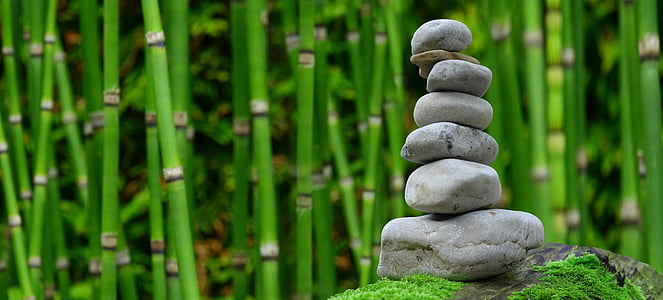focus photo of cairn with bamboo trees background