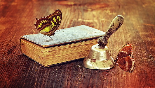white and brown butterfly on brown book near grey desk bell