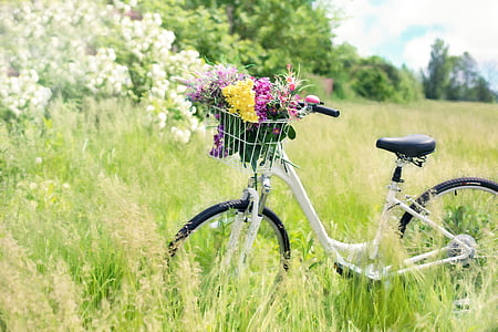 flower on bicycle near on grasses