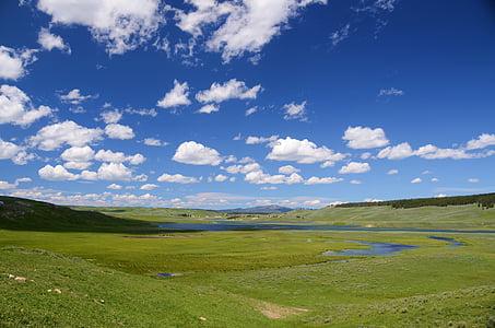 landscape photograph of green grass field