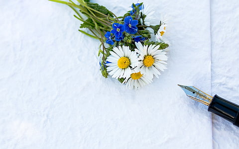 white daisy and blue commelineae flower bouquet