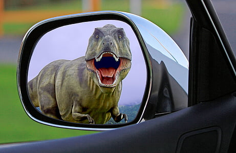 vehicle side mirror showing dinosaur