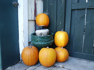 five yellow pumpkins