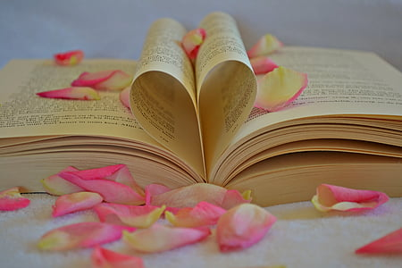 book and pink flower petals