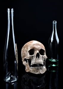 beige skull and two clear glass bottles
