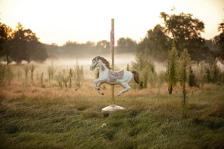 white carousel on green grass field