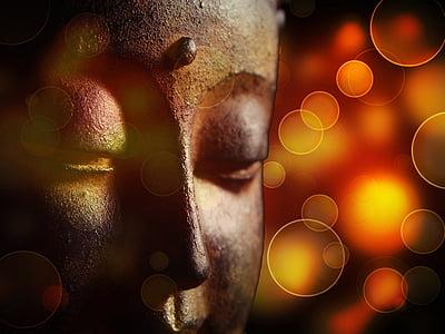 shallow focus photography Gautama Buddha