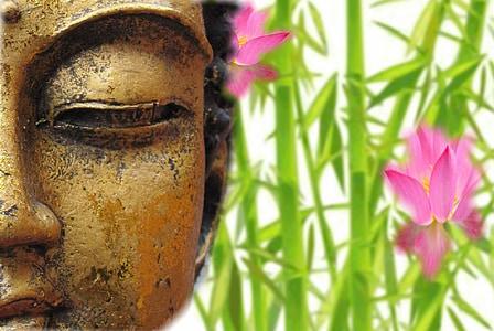Buddha and pink waterlily flower