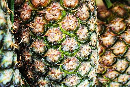 pineapple in macro shot photography