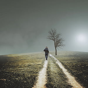 person walking on desired pathway under gray clouds