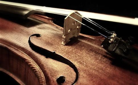 macro shot of violin