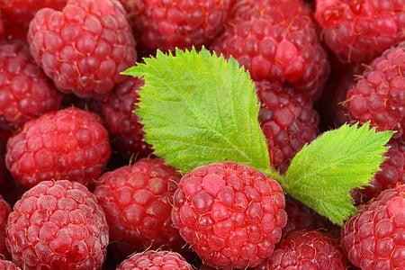 macro photography of strawberries