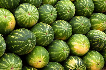 closeup photo of green watermelon fruits