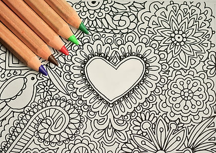 five assorted-color color pencils on black and white floral printed paper