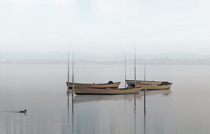 boat on body of water