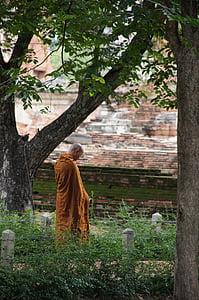 monk beside the tree