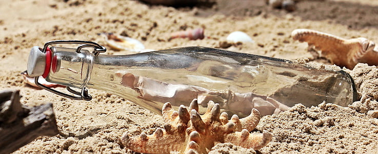 clear glass bottle on brown sand beside brown seashells