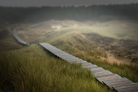 high angle photo of brown wooden pathway on mountain range
