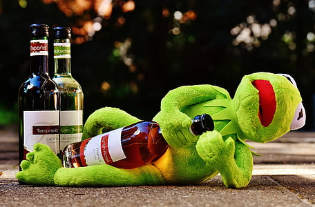 Kermit the Frog holding wine bottle