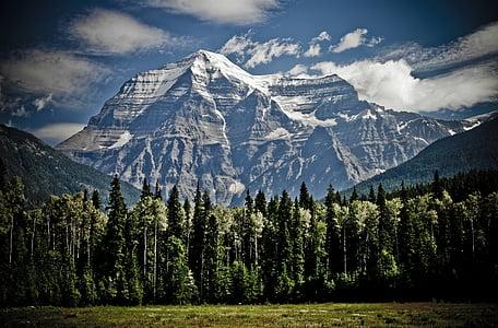 white and black mountains near trees digital wallpaper